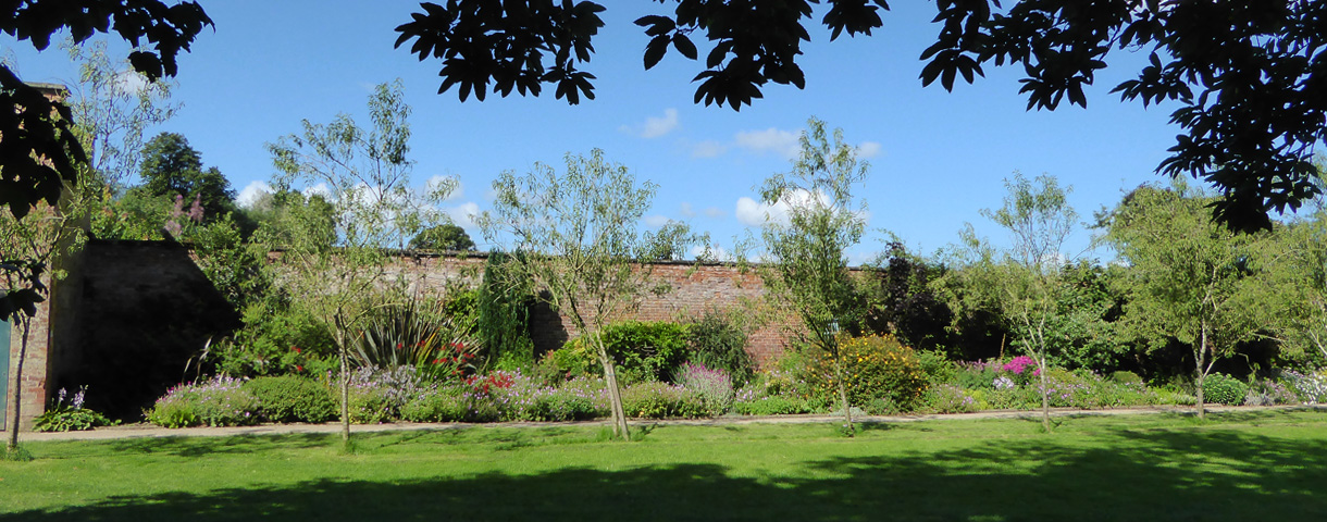 Walled garden wall & trees
